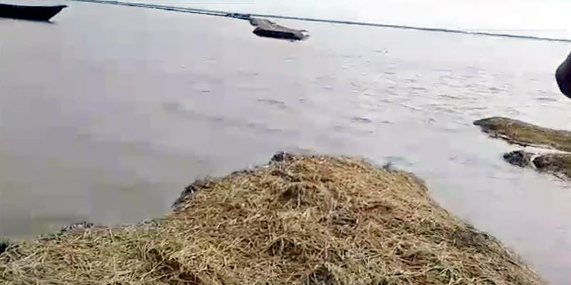 সুনামগঞ্জে হাওরের বাঁধ ভেঙে ৩০০ একর জমি প্লাবিত