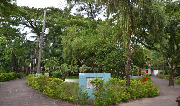 সমকামিদের স্বর্গরাজ্য সিলেট নগরীর জালালাবাদ পার্ক