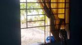 বিশ্বনাথে প্রবাসীর বসতঘর থেকে ব্রিটিশ পাসপোর্টসহ মালামাল চুরি : মামলা