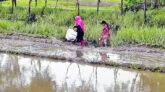 কোম্পানীগঞ্জে একটি সড়কের জন্য ১৫ হাজার মানুষের ভোগান্তি