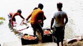 জৈন্তাপুর সীমান্তে চেরাকারবারীদের নিত্য নতুন কৌশল, নদীপথে ভেসে আসছে ভারতীয় পণ্য